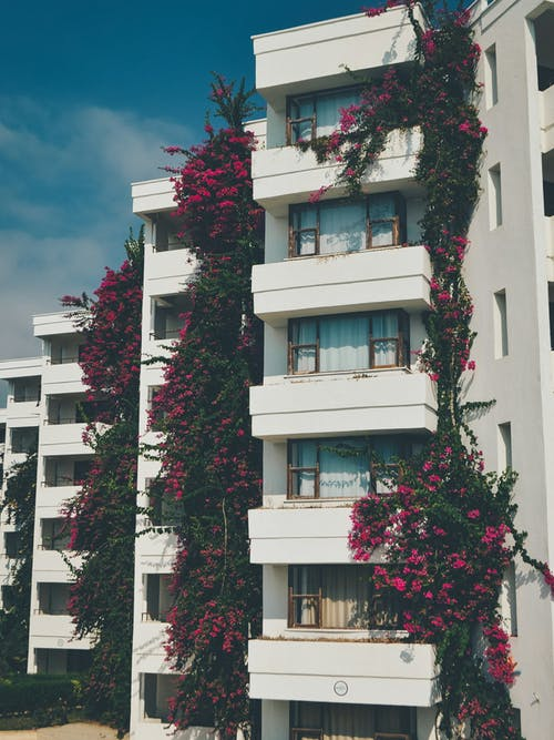 Learn About Investing in Multifamily Apartments